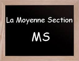 Moyenne Section Maternelle